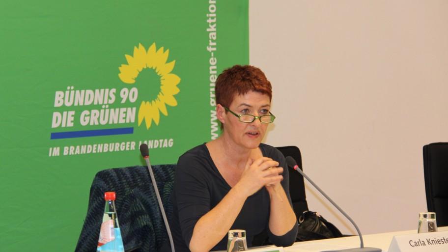 Moderatorin Carla Kniestedt © Fraktion