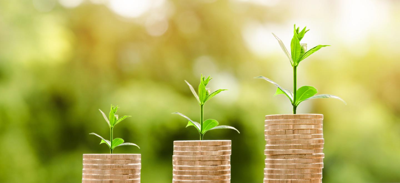 Geldstücke und Pflanzen